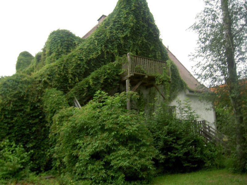 Die Ruckeschell-Villa vor der Renovierung